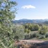 Kép 5/5 - PARQUEOLIVA extra szűz olívaolaj 3000ml fémdobozos