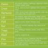 Kép 2/3 - Perla Tea Green 20 db/doboz