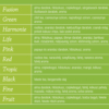 Kép 2/3 - Perla Tea Fusion 20 db/doboz